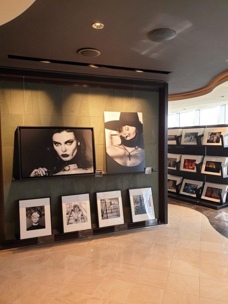 Msc Seashore Art Gallery